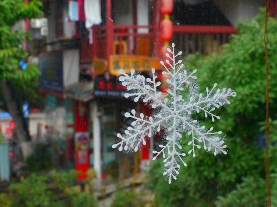 P1020096small snowflake