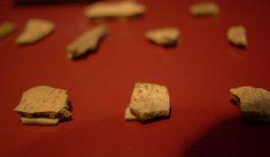 Oracle bone fragments, Anyang