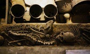 Human and dog sacrifice, Lady Hao's tomb