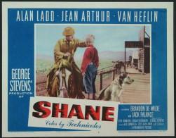 shane-horizontal